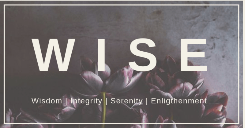 Header _FB_WISE